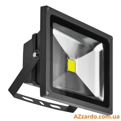 Azzardo Flood Light 30W (FL203002)