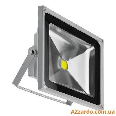 Azzardo Flood Light 50W (FL205001)