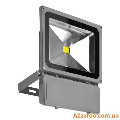 Azzardo Flood Light 80W (FL208001)